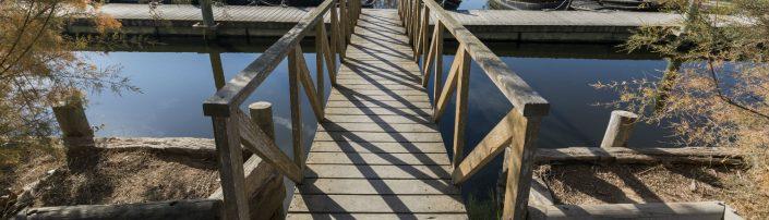 Imagen de una pasarela de madera en la Albufera de València
